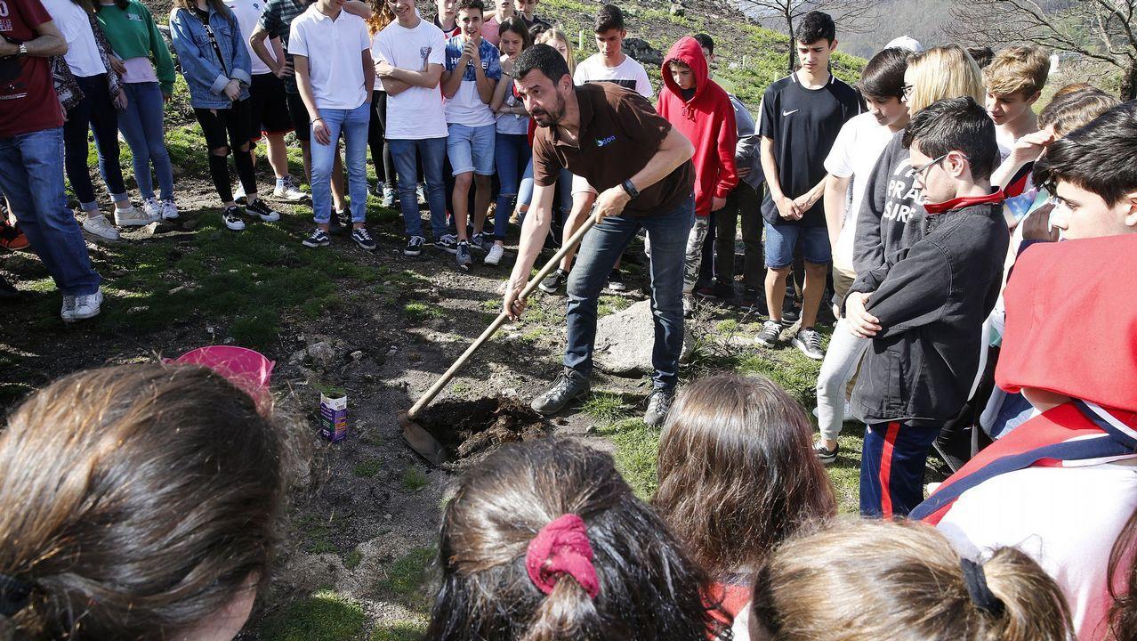 ¡Mira aquí las imágenes de la plantación de árboles de Voz Natura del colegio de Cespón!.Alumnos del colegio Salesianos plantan árboles en Chandebrito