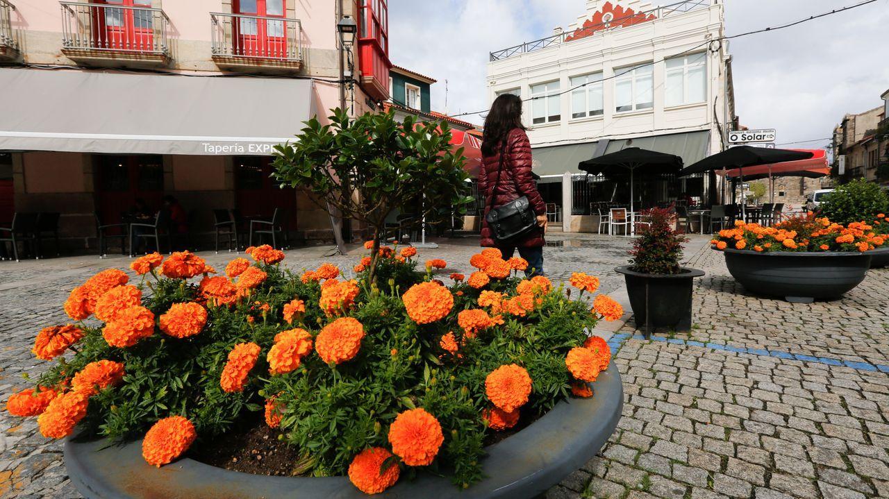 Recogida de la aceituna en el municipio de Quiroga.Imagen desde el aire de las antiguas construcciones que fueron anegadas por el embalse
