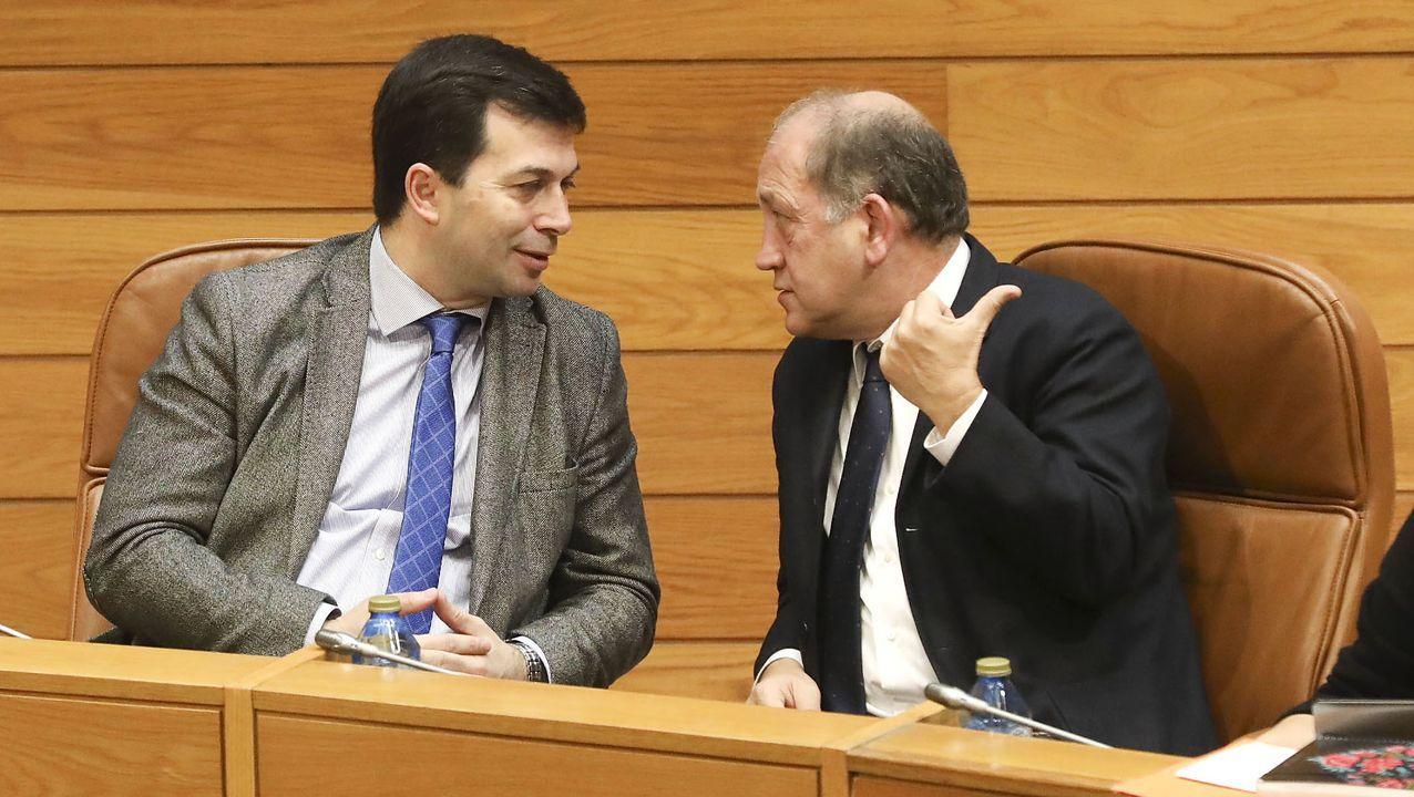 Presentación da Colección de Arte do Parlamento de Galicia.Leiceaga, junto al secretario xeral del PSdeGa, Gonzalo Caballero, durante un pleno del parlamento gallego