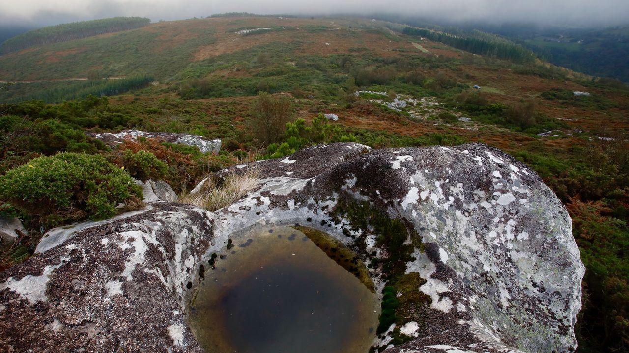 Zonas de O Xistral entraron en la Red Natura, con lo que quedaron fuera de la instalación de parques eólicos