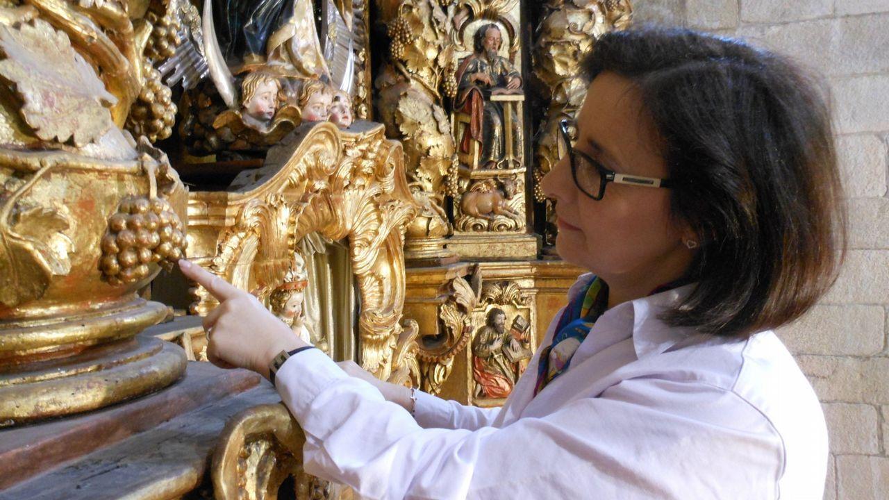 Carmen Martínez y su equipo recuperaron 30 variedades de uva. Para ello, investigaron fuentes históricas como retablos