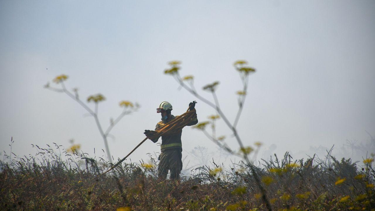 Unidades de los Bombeiros de A Coruña y de la Xunta intervienen en un incendio próximo a O Portiño.Alejandro Calvo