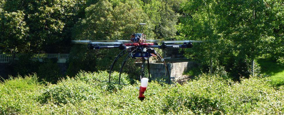 Los expertos colocaron al dron un dispositivo para acabar con plagas forestales y siguen investigando.