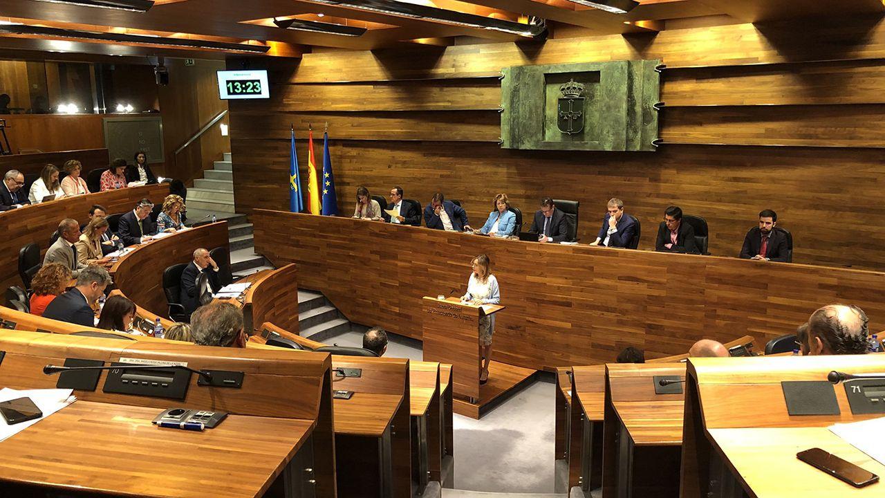 Barbón se proclama nuevo presidente de Asturias.Ángela Vallina en la Junta General