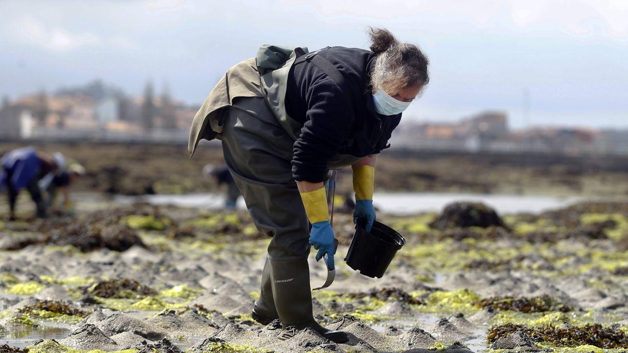 Mareas vivas en Arousa.La vicepresidenta del Gobierno Teresa Ribera, en una imagen de julio del año 2020