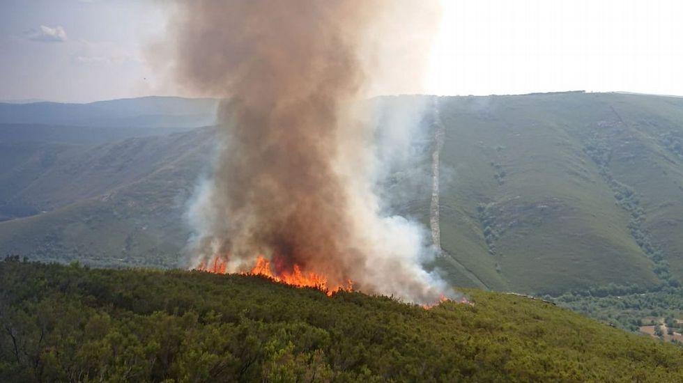 Dos incendios queman el parque de O Invernadoiro