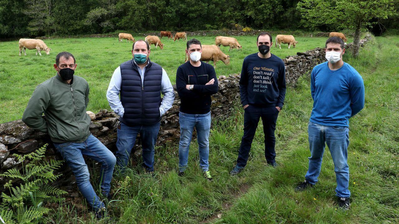 José Manuel, Javier, Santiago, Pablo y Javier son productores de Ternera Gallega Suprema.