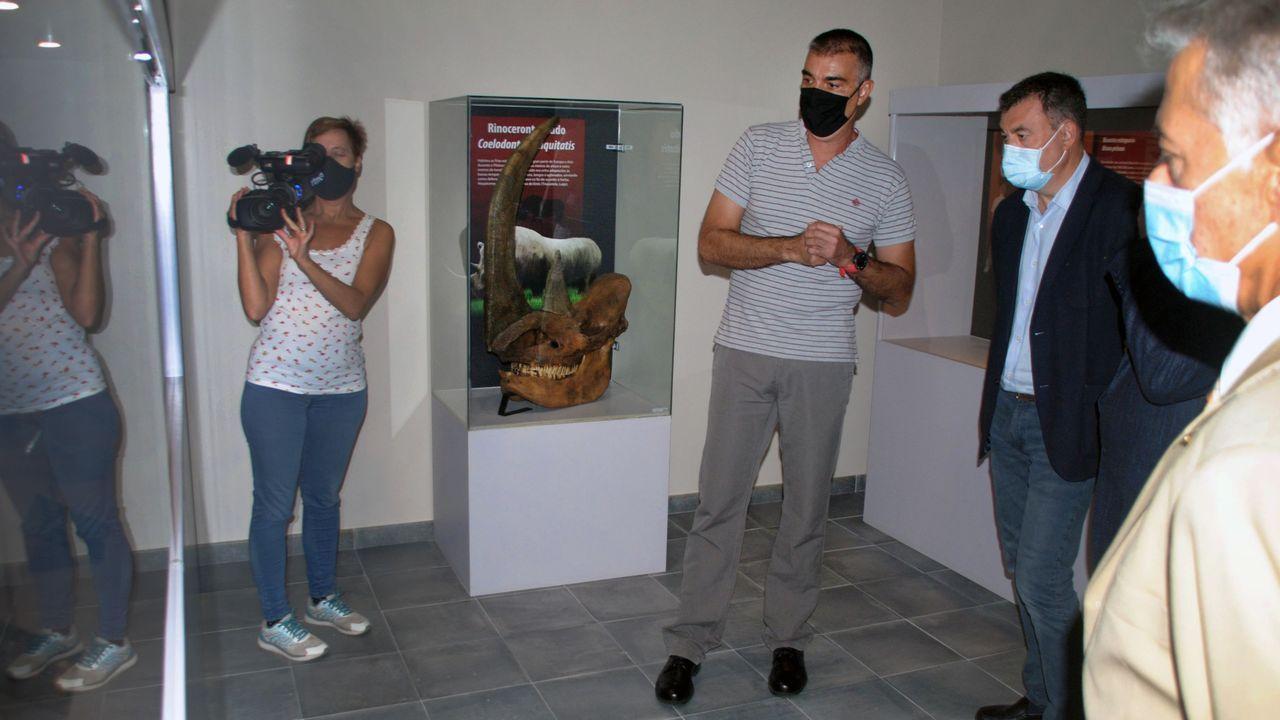 El director del museo, Ramón Vila, hizo de guía en la visita de ayer a las nuevas instalaciones