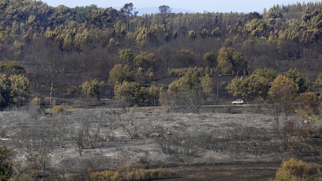 Tierras quemadas entre las parroquias de Seoane y Tor