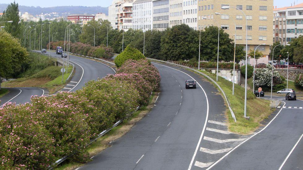 El tramo del AVE que ahorrará 50 minutos en el viaje a Madrid se abrirá «en pocos meses».José Luis Ábalos, ministro de Fomento en funciones y secretario de organización del PSOE