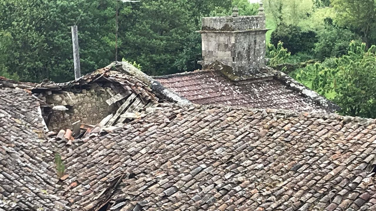 Orquídeas silvestres vistas en la parroquia de Caneda durante el confinamiento.El desplome del tejado del antiguo convento es visible desde el campanario de la vecina iglesia de San Salvador de Asma