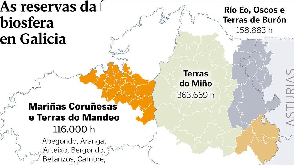 <span lang= gl >As reservas da biosfera en Galicia</span>