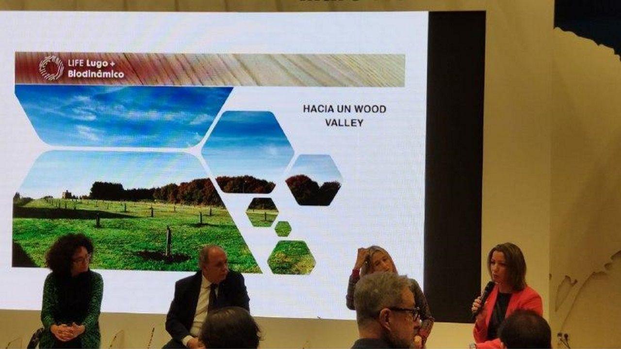 paco.La gestión sostenible de los recursos obtenidos del suelo está ligada a su importancia como factor de crecimiento económico y de seguridad alimentaria