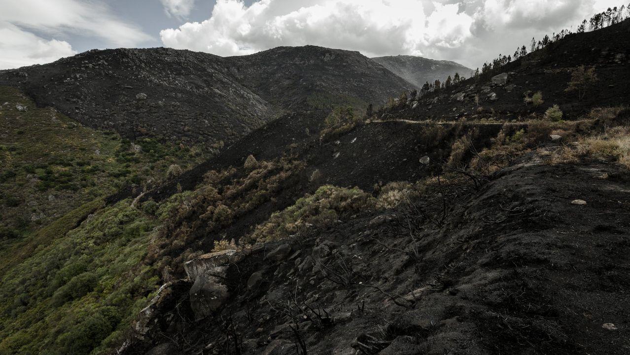 Desolación en los montes del Xurés tras la ola incendiaria de este mes