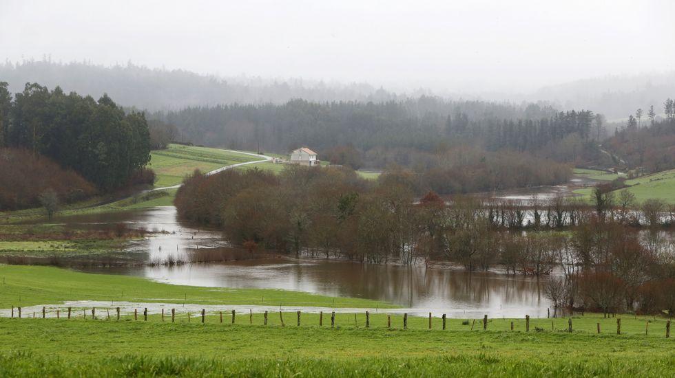 Río Tambre desbordado en Sigüeiro.