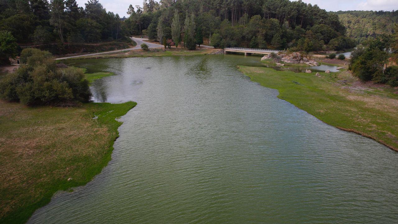 El embalse del Umia está en alerta por cianobacterias desde el pasado 16 de julio