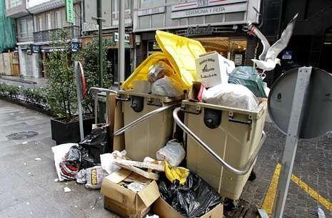 Una gaviota curiosea entre los desperdicios de un contenedor ayer en la Rúa Nueva.