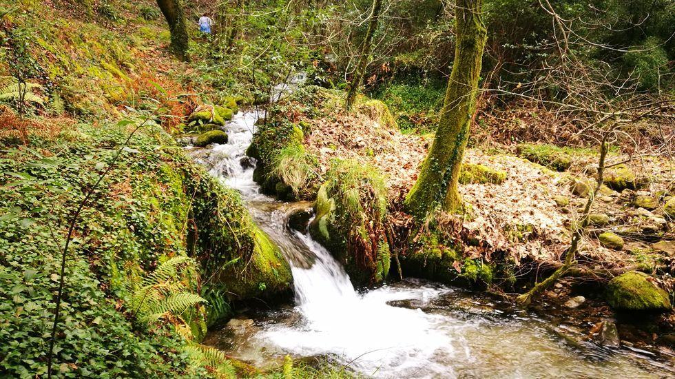 Cascadas y saltos de agua adornan O Codorneiro, en Lousame