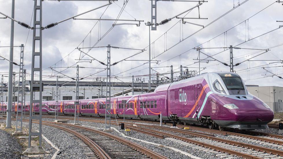 Suciedad en los trenes Vigo-A Coruña.De izquierda a derecha, Fabio González, Iria Otero, Elisabet Castro y Laura Lorenzo