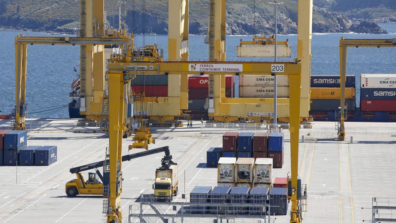 Jura de bandera en la base naval de A Graña.Primera revisión de contenedores con productos de origen animal en la instalación recién inaugurada