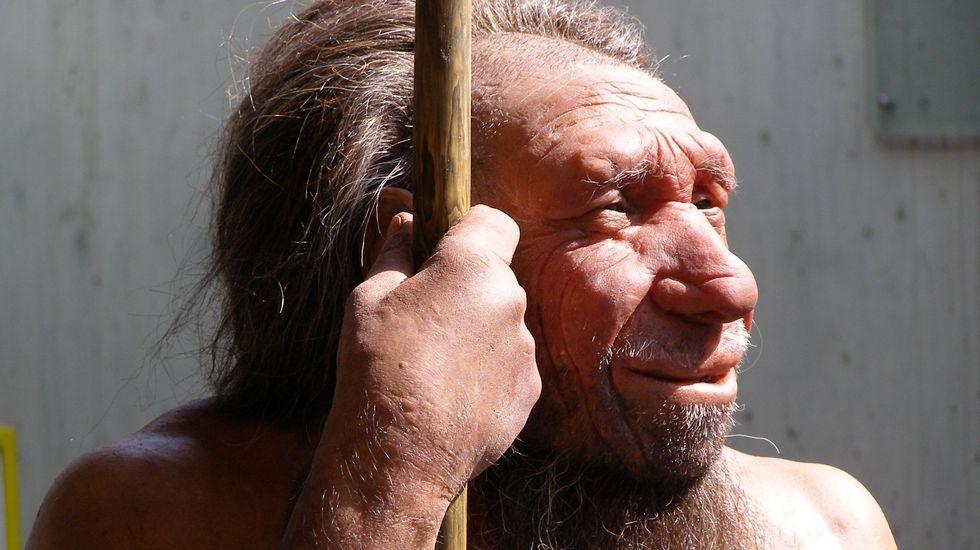 Reproducción de un neandertal del Museo de Düsseldorf