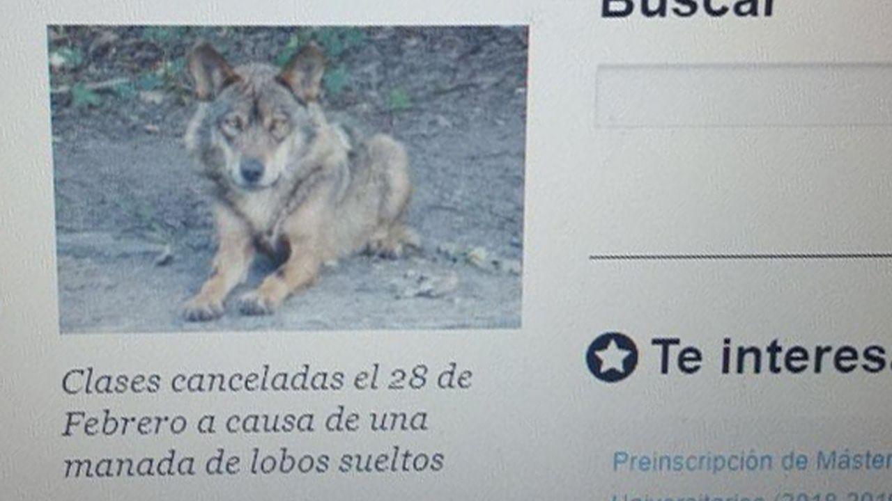 Una de las imágenes del hackeo a la web de la Universidad de Oviedo