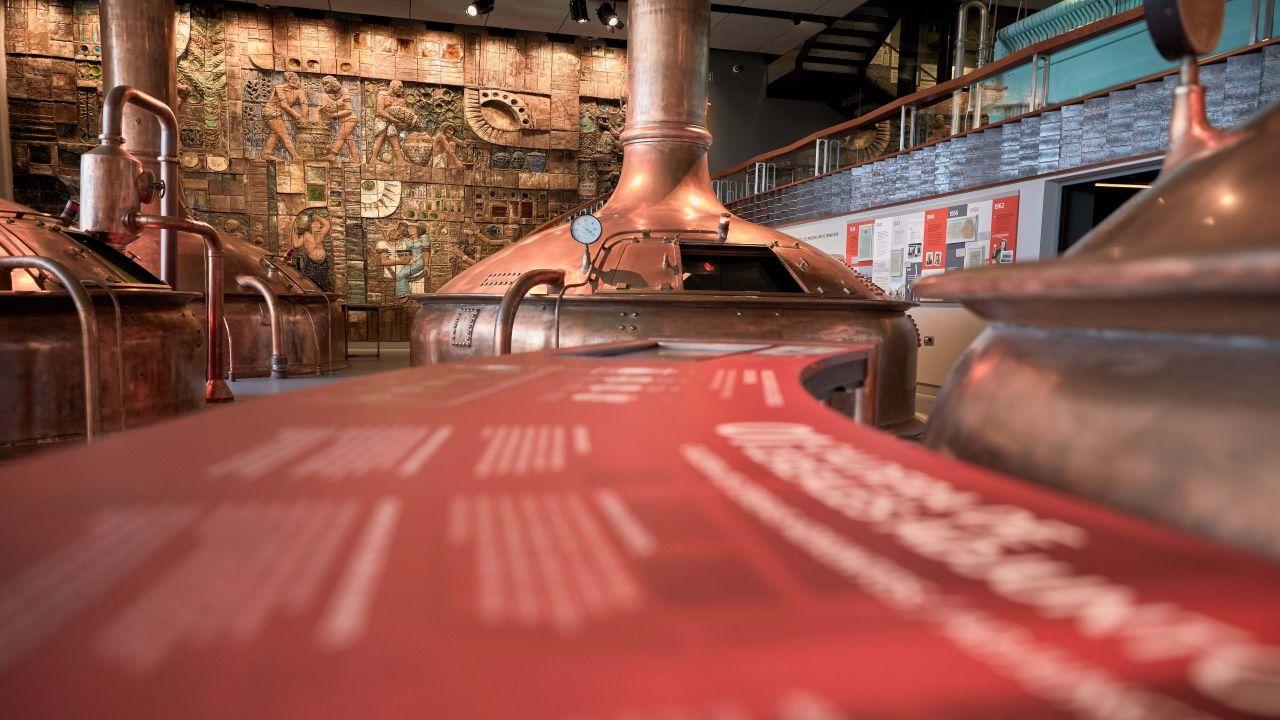 Búscate en la inauguración de la vinoteca Noray.Imagen de archivo de uno de los instantes de la inauguración de MEGA