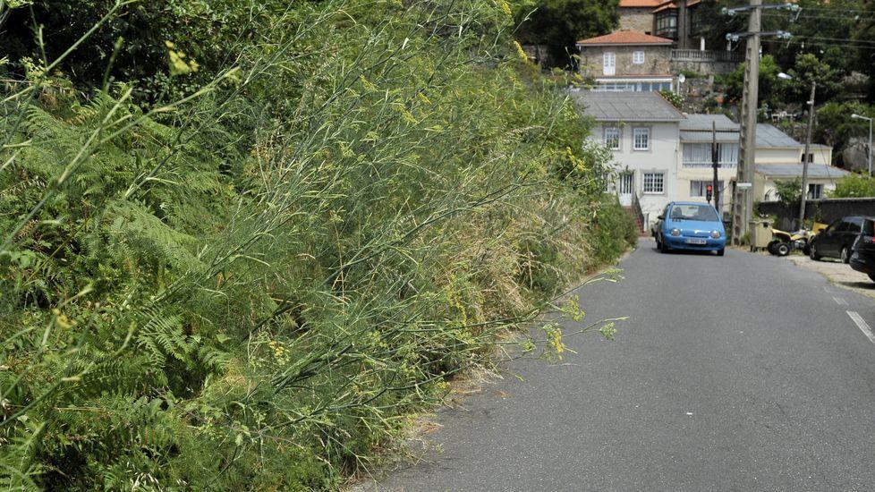 Los vecinos piden la reparación de estas escaleras deterioradas en el barrio de Teatinos de Oviedo