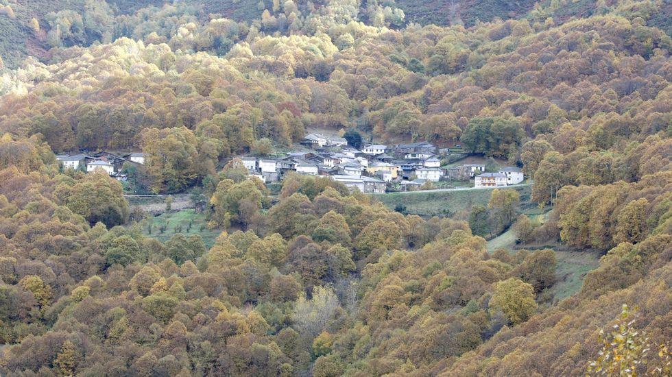 Vista del pueblo de Santa Eufemia, en O Courel, rodeado de bosque de castaños