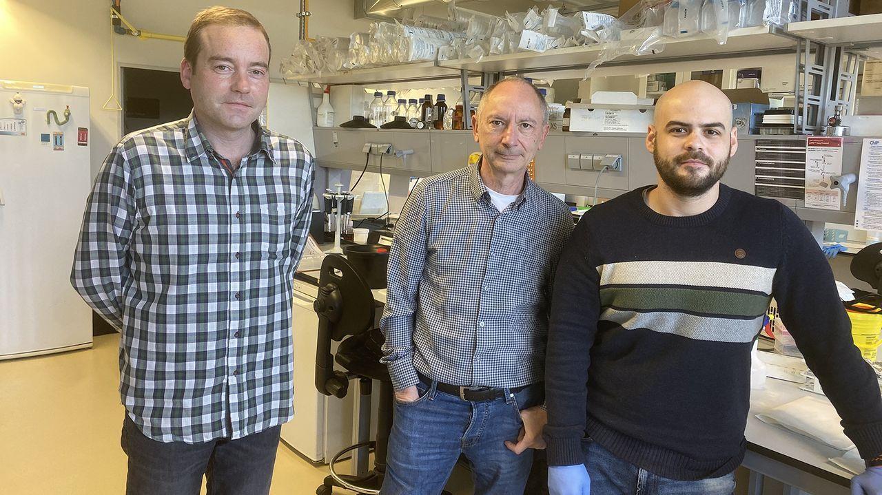 Investigadores de la USC de izquierda a derecha: Samuel Seoane, Román Pérez-Fernández y Leando Ávila