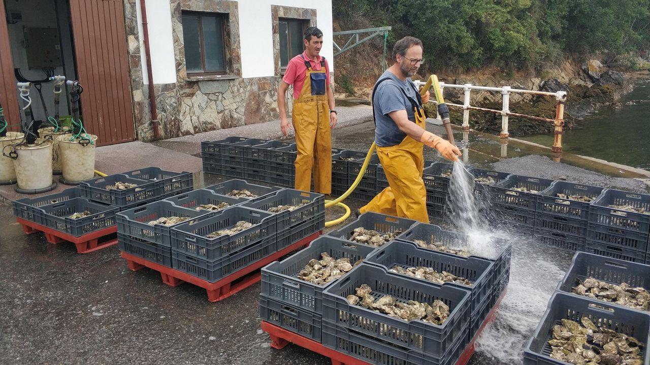 Imagen de archivo de bellotas de hachís intervenidas por la Guardia Civil en una operación en Galicia .Títeres Cachirulo actuará esta tarde en Sarria