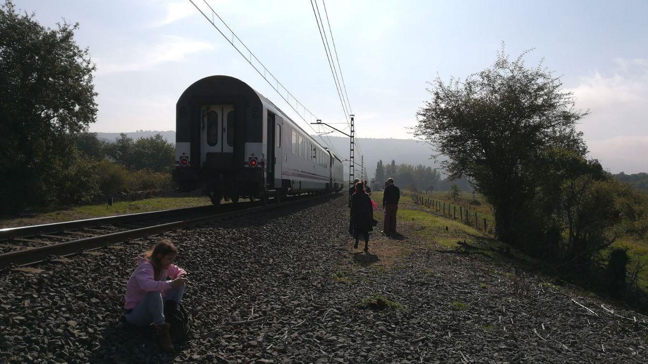 El tren Galicia-País Vasco, parado en la vía durante una avería ocurrida en el 2017 entre Miranda de Ebro y Bilbao