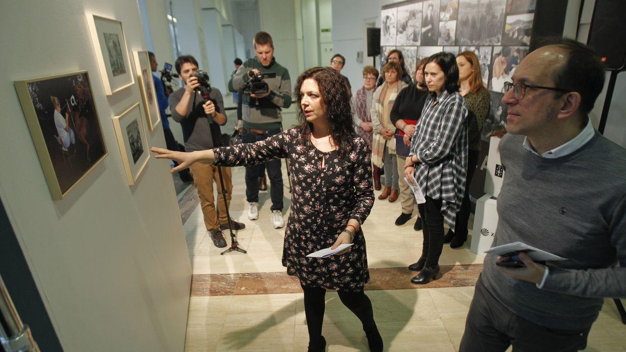 El director del Museo de Bellas Artes presenta la exposición de Orlando Pelayo.Alexia Luiña