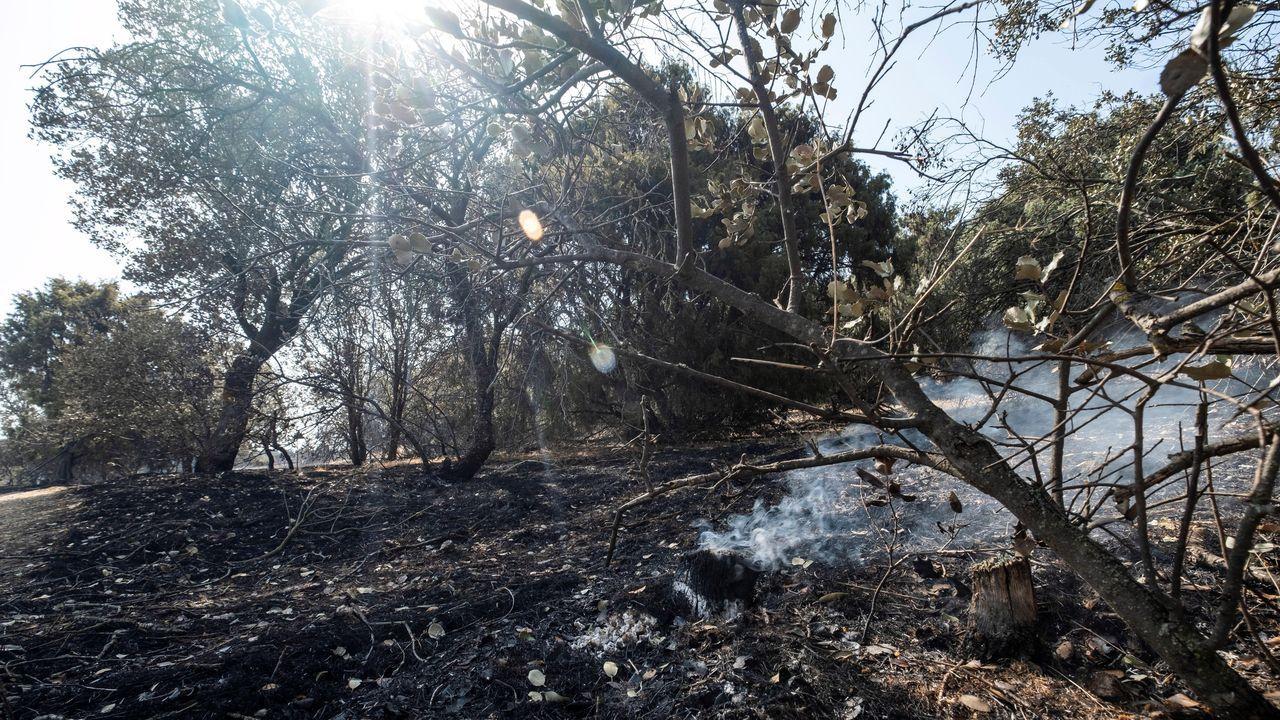 Vista general de la zona afectada por el incendio de Toledo. Los vecinos que fueron desalojados de sus viviendas de las urbanizaciones de Montesión y San Bernardo, en Toledo