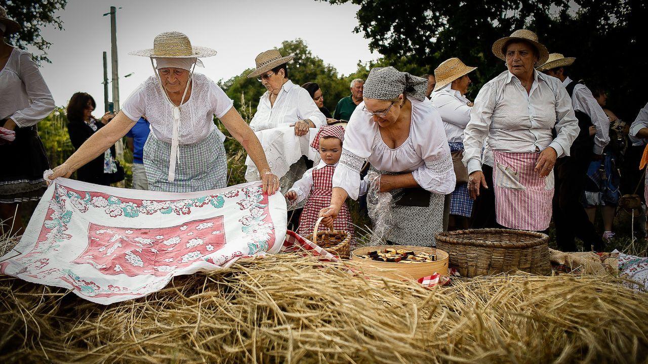 Festa da malla en Allariz