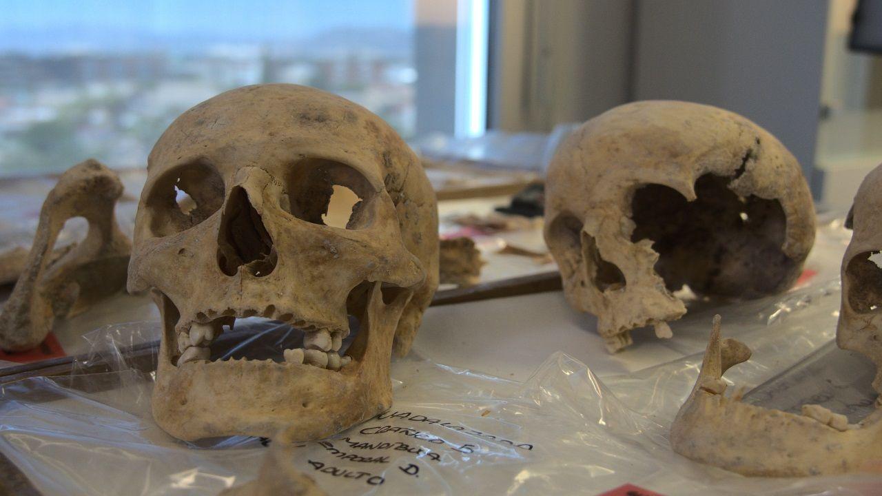 Muestras de la familia de Cristóbal Colón que serán sometidas a un análisis de ADN en la Universidad de Granada