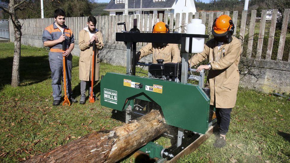 En el IES de Ortigueira se enseña a los profesionales de la madera a usar un aserradero portátil, una novedad que facilita el trabajo con árboles aislados