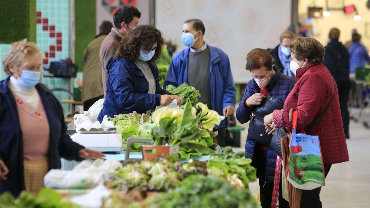 La abundancia de hortalizas es propia de mercados de estas semanas de primavera