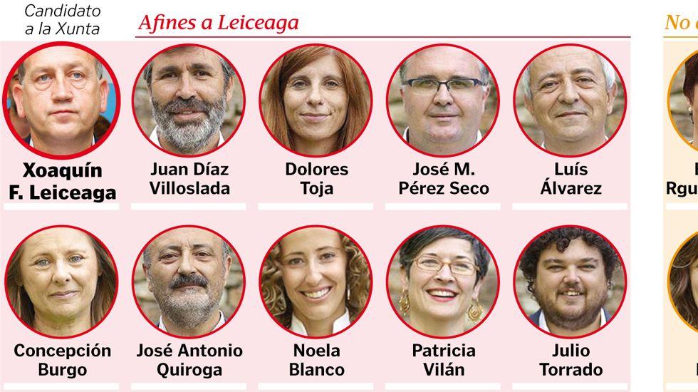 Sectores dentro del grupo parlamentario del PSdeG