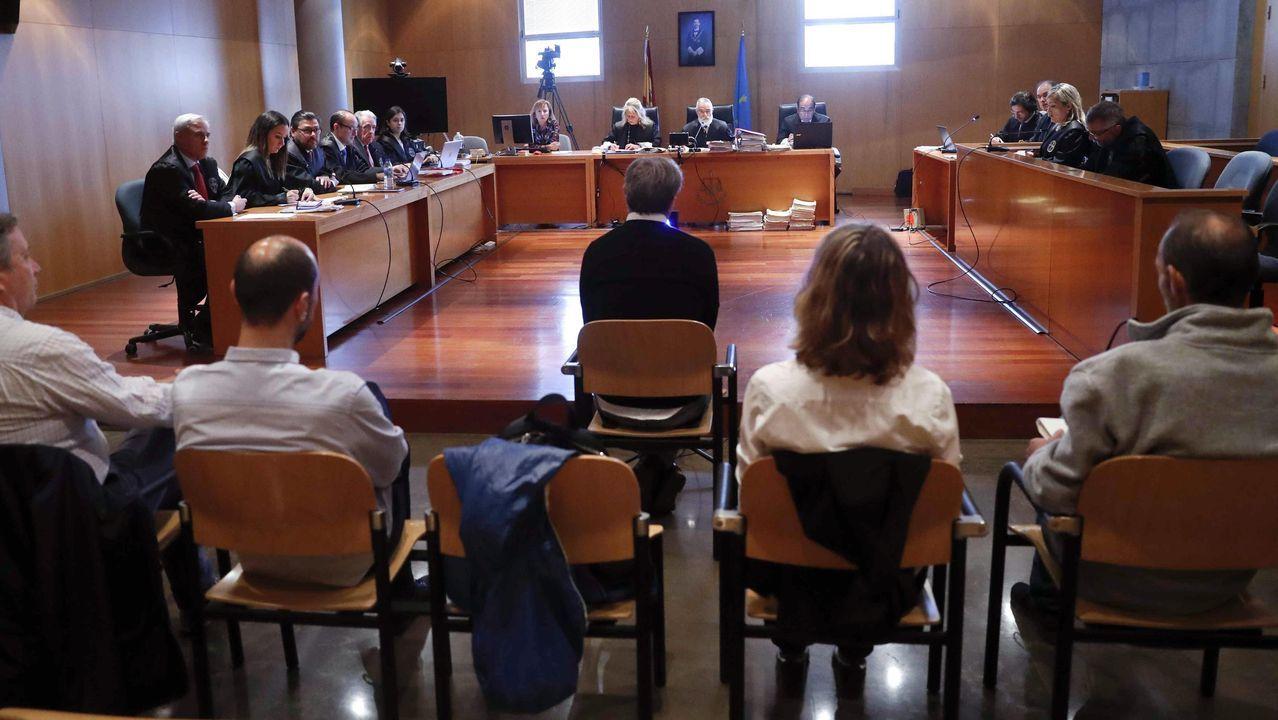 La Sección Tercera de la Audiencia Provincial retomó el juicio del caso Niemeyer