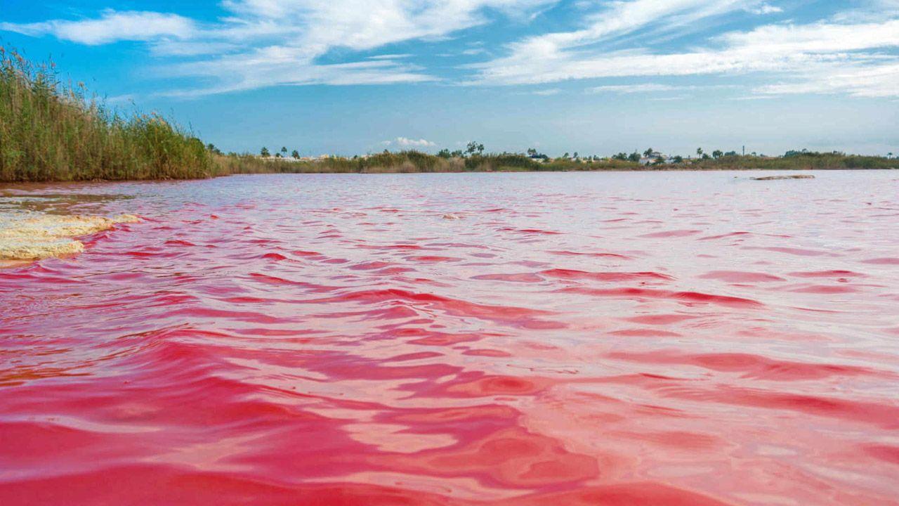 Laguna rosa de La Mata y Torrevieja, en Alicante