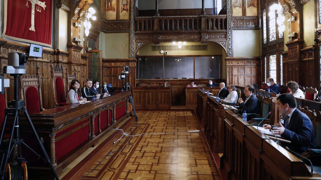 La comisión especial no permanente de estudio de la gestión de la crisis provocada por el COVID-19 durante las comparecencias que se celebran en la Junta General