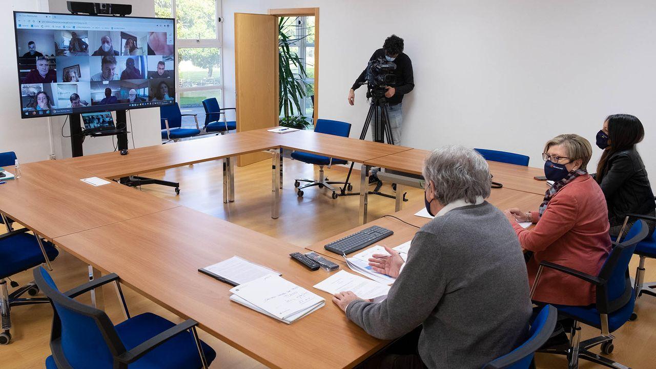 El martes se reunió por teleconferencia el pleno del Consello Galego de Pesca, presidido por Rosa Quintana, cuyo departamento aún no ha recibido los detalles del acuerdo del  brexit  que le pidió al Gobierno español