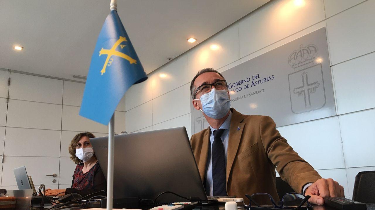 El consejero de Salud, Pablo Fernández, en la sesión del Consejo Interterritorial del Sistema Nacional de Salud