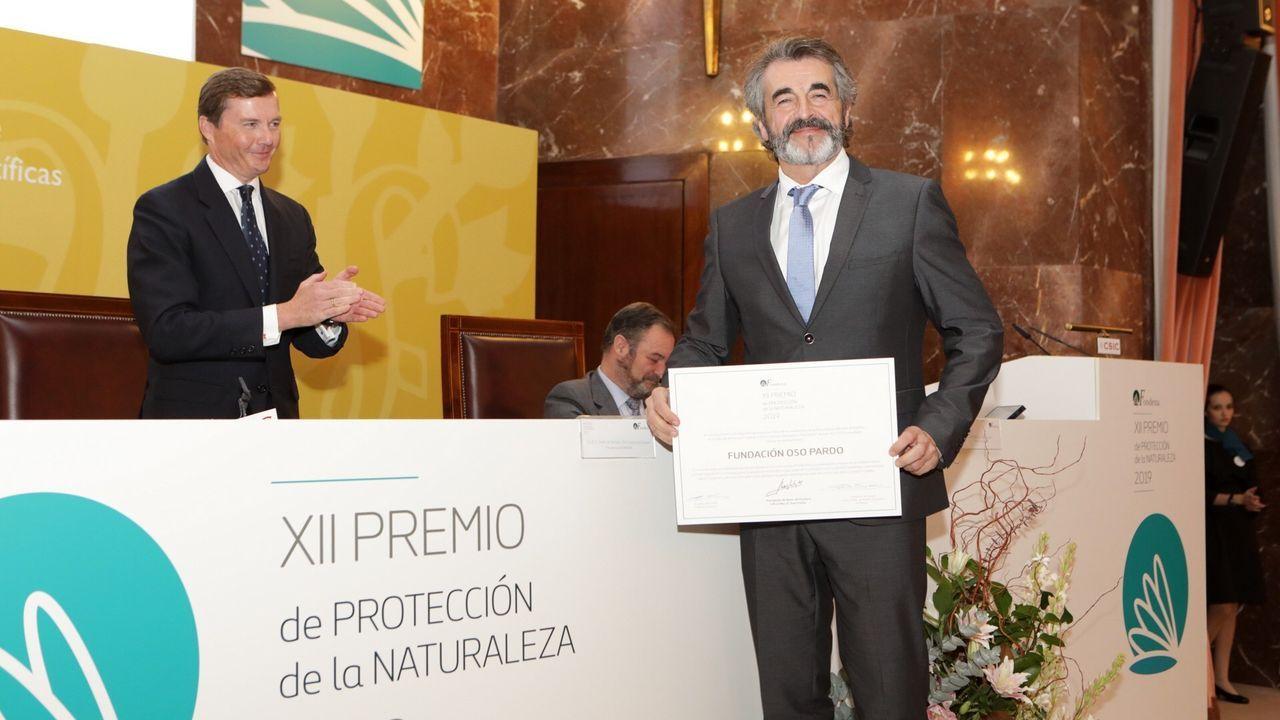 Guillermo Palomero, presidente de la Fundación Oso Pardo, recogió el premio en la sede del Consejo Superior de Investigaciones Científicas en Madrid
