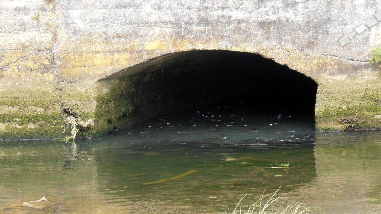 Posibles vertidos residuales al río Piles