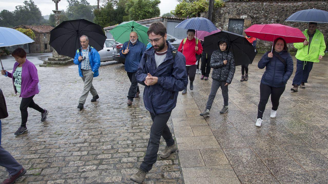 El ensilado ocupa a más de doscientas personas en la comarca