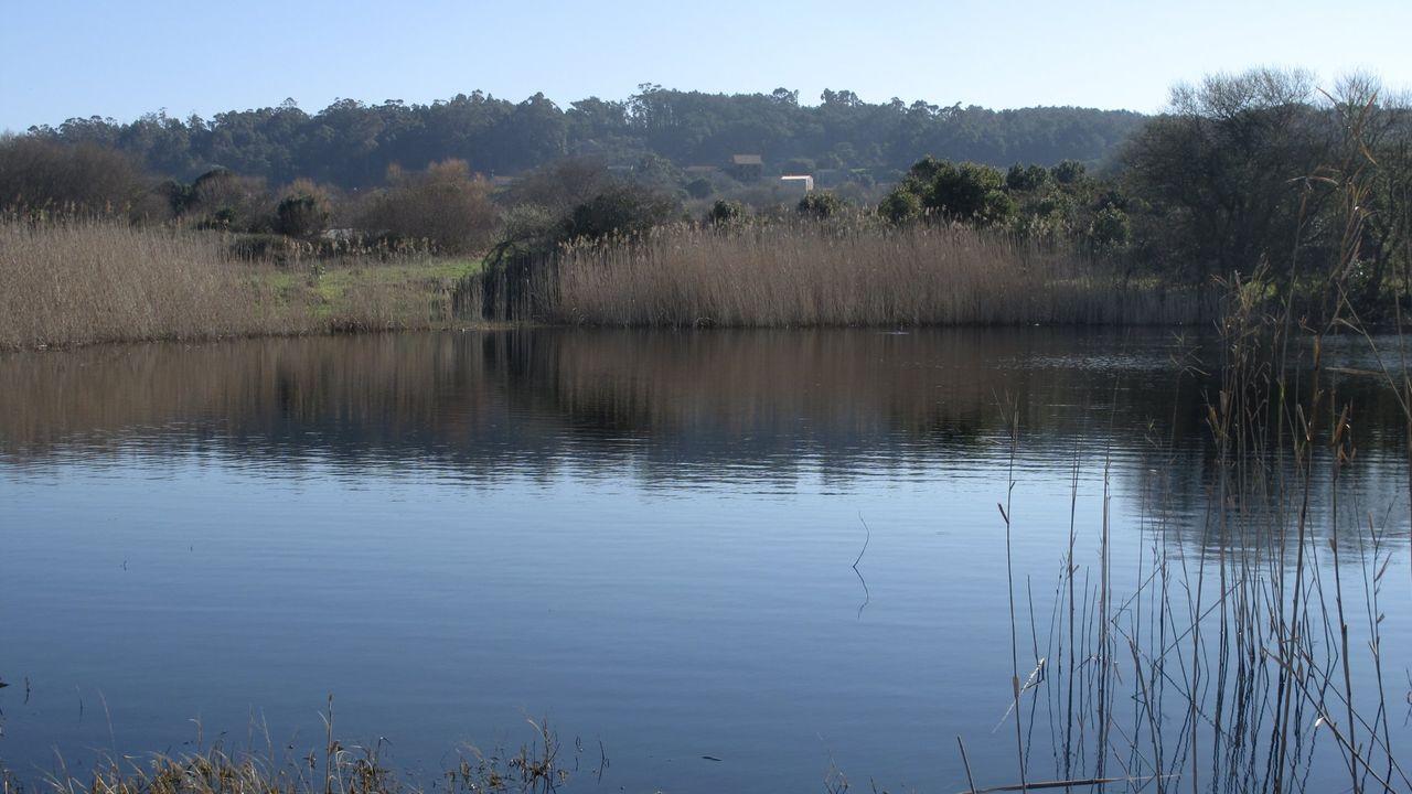 La laguna A Bodeira (O Grove), lugar de serenidad para el chef Javier Olleros