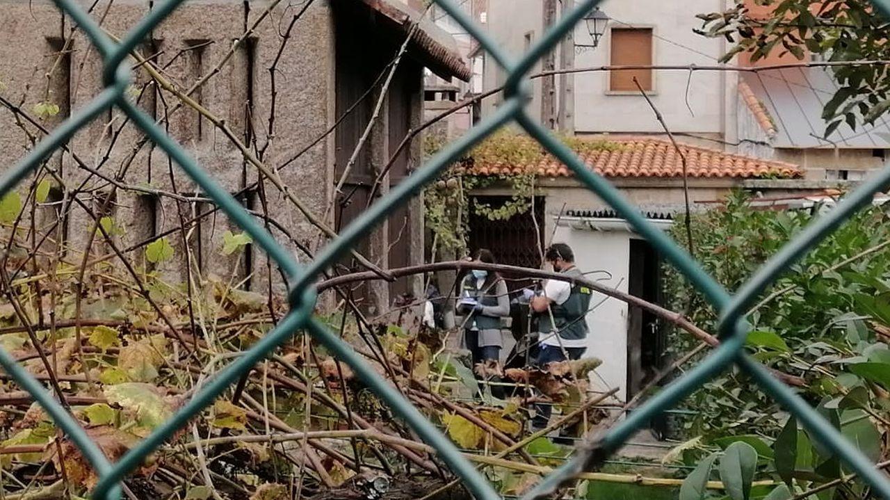 Recogida de la aceituna en el municipio de Quiroga.Santo Estevo de Ribas de Miño, en O Saviñao, es una de las joyas que destaca en esta ruta europea
