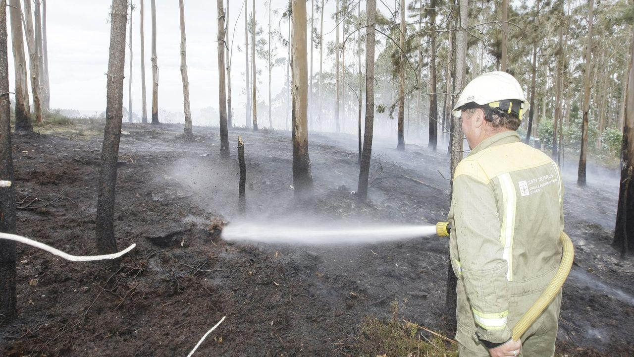 Incendio forestal registrado en la parroquia de San Martiño en 2014